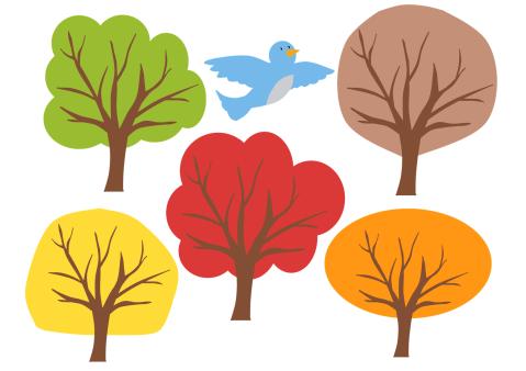 Little Bird in the Tree2