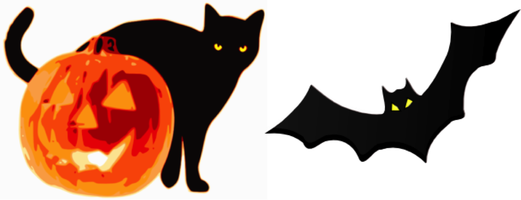 Black Cats Song