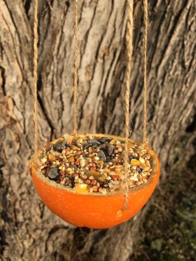 Orange Bird Feeder Craft